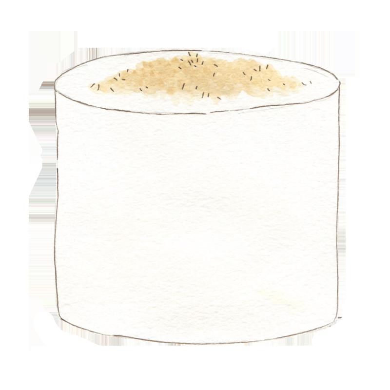 Treat - Toasty Coconut